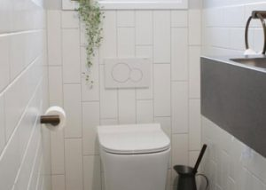 Fitted Toilet