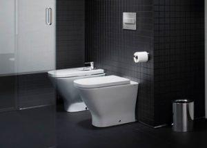 Toilet or Bidet
