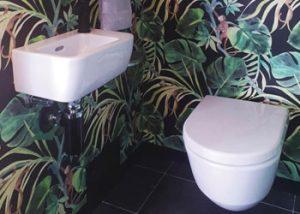 Wall Mount Toilet